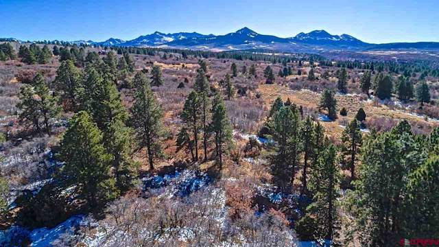 TBD Peninsula Drive, Placerville, CO 81430 (MLS #764493) :: The Dawn Howe Group | Keller Williams Colorado West Realty