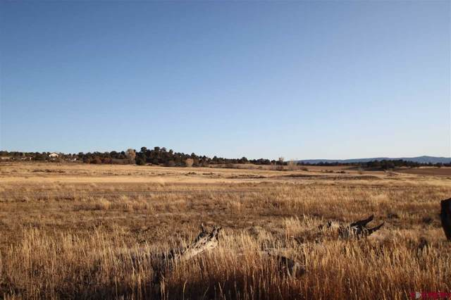 TBD, Lot C Cr 510, Durango, CO 81303 (MLS #764510) :: Durango Mountain Realty