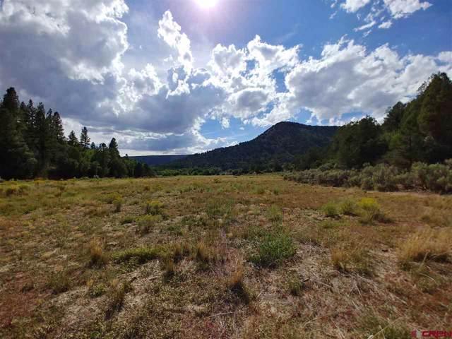 60 Shasta Trail, Hesperus, CO 81326 (MLS #764511) :: Durango Mountain Realty