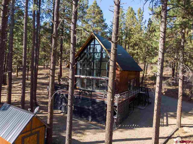 873 Los Ranchitos Drive, Durango, CO 81301 (MLS #764537) :: Durango Mountain Realty