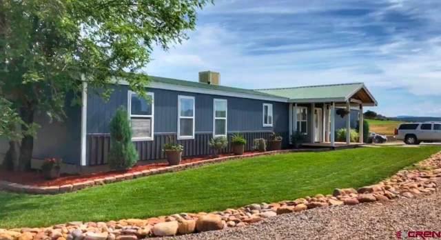 115 Tres Aguas Road, Ignacio, CO 81137 (MLS #764616) :: Durango Mountain Realty