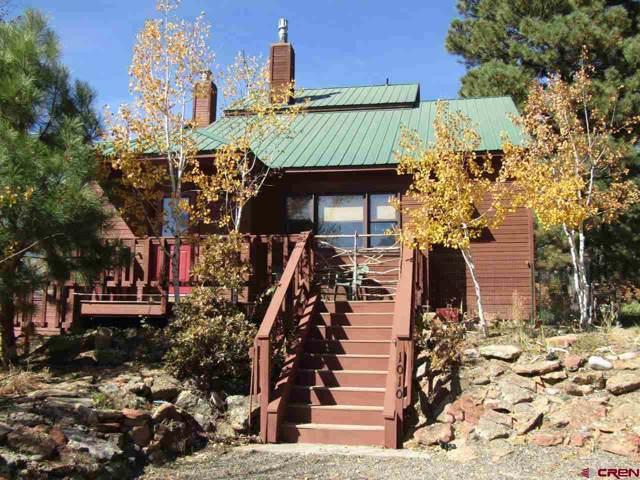 1010 Cloud Cap Avenue, Pagosa Springs, CO 81147 (MLS #764656) :: The Dawn Howe Group | Keller Williams Colorado West Realty