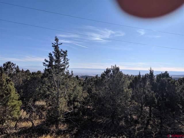 TBD Uintah Road, Cedaredge, CO 81413 (MLS #764660) :: The Dawn Howe Group | Keller Williams Colorado West Realty