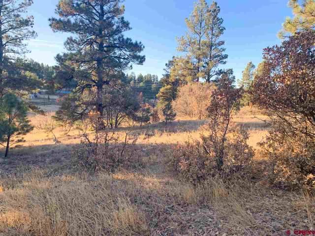 6 Laurel Drive, Pagosa Springs, CO 81147 (MLS #764666) :: The Dawn Howe Group | Keller Williams Colorado West Realty