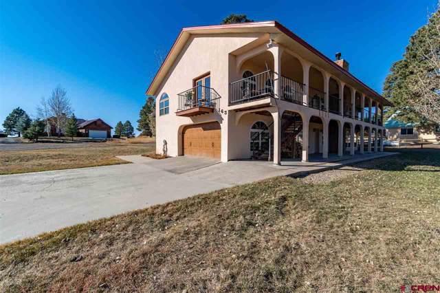 163 Hawk Place, Pagosa Springs, CO 81147 (MLS #764681) :: The Dawn Howe Group | Keller Williams Colorado West Realty