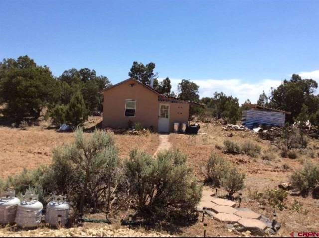 17282 Road 15, Yellow Jacket, CO 81335 (MLS #764729) :: The Dawn Howe Group | Keller Williams Colorado West Realty