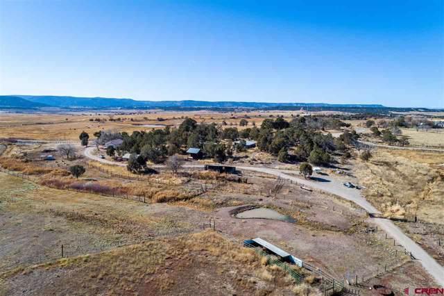 2110 Cr 321, Ignacio, CO 81122 (MLS #764774) :: The Dawn Howe Group | Keller Williams Colorado West Realty