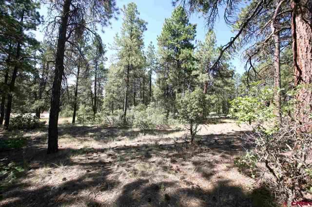 47 Kenosha Trail, Durango, CO 81301 (MLS #764839) :: Durango Mountain Realty