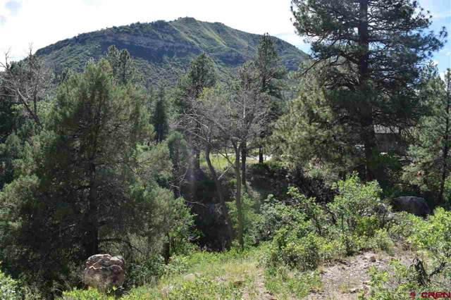 48 Yucca Court, Durango, CO 81301 (MLS #764870) :: Durango Mountain Realty