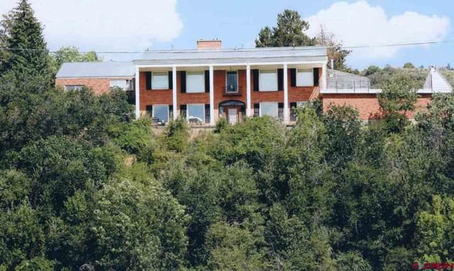107 Riverview Drive, Durango, CO 81301 (MLS #764917) :: Durango Mountain Realty