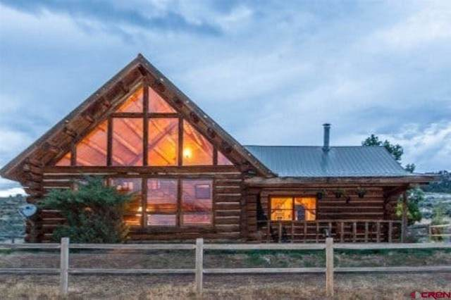 411 County Road 12, Ridgway, CO 81432 (MLS #764924) :: The Dawn Howe Group | Keller Williams Colorado West Realty