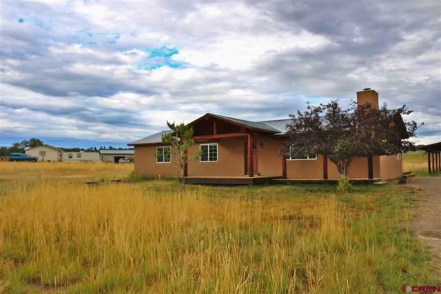 480 Rustic Road, Durango, CO 81301 (MLS #764968) :: Durango Mountain Realty
