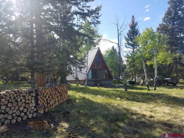 337 Cinnamon Trail, Powderhorn, CO 81243 (MLS #764971) :: The Dawn Howe Group | Keller Williams Colorado West Realty