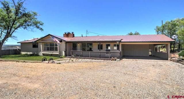 29639 E Hwy 160, Durango, CO 81301 (MLS #765063) :: Durango Mountain Realty