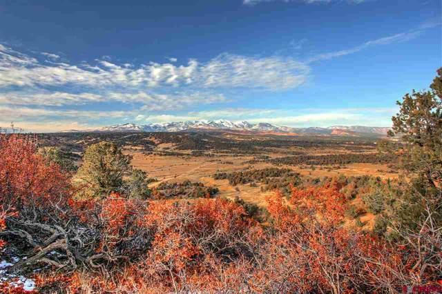 TBD Cr 141, Durango, CO 81301 (MLS #765136) :: Durango Mountain Realty