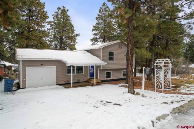 78 Choke Cherry Circle, Durango, CO 81303 (MLS #765152) :: Durango Mountain Realty