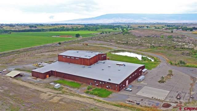 2520 N River Road Road, Olathe, CO 81425 (MLS #765202) :: The Dawn Howe Group | Keller Williams Colorado West Realty