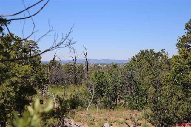 234 D Bar K Drive, Durango, CO 81301 (MLS #765440) :: Durango Mountain Realty