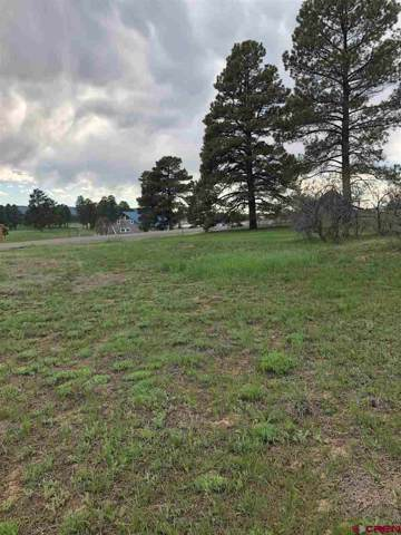 160 E Golf Place, Pagosa Springs, CO 81147 (MLS #765482) :: The Dawn Howe Group | Keller Williams Colorado West Realty