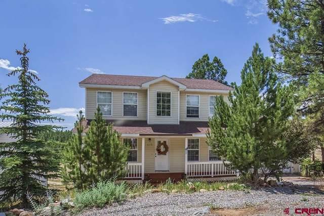 210 Canyon Creek Trail, Durango, CO 81301 (MLS #765667) :: Durango Mountain Realty