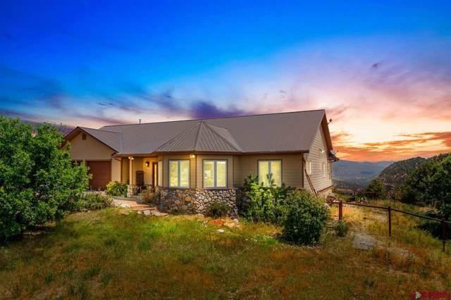 483 Far View Road, Durango, CO 81303 (MLS #765708) :: Durango Mountain Realty