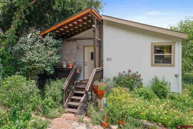 6000 County Road 203 #60, Durango, CO 81301 (MLS #765734) :: Durango Mountain Realty