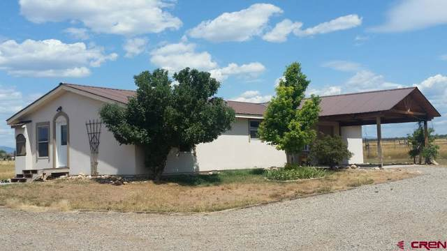 355 Quarter Horse Road, Durango, CO 81301 (MLS #765943) :: Durango Mountain Realty