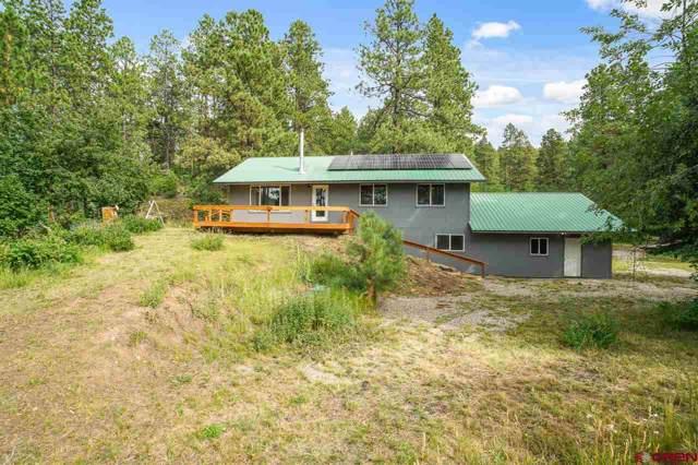 344 Groves Drive, Durango, CO 81301 (MLS #766010) :: Durango Mountain Realty
