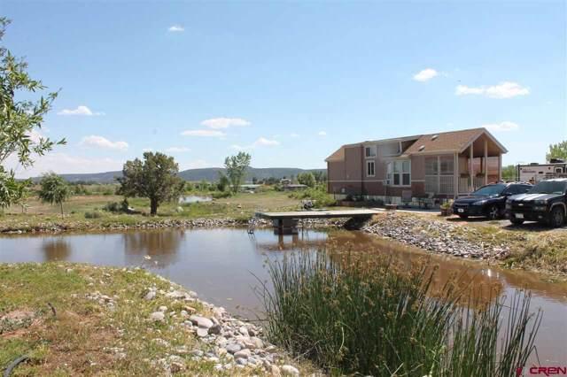20220 Highway 151, Arboles, CO 81121 (MLS #766012) :: The Dawn Howe Group | Keller Williams Colorado West Realty