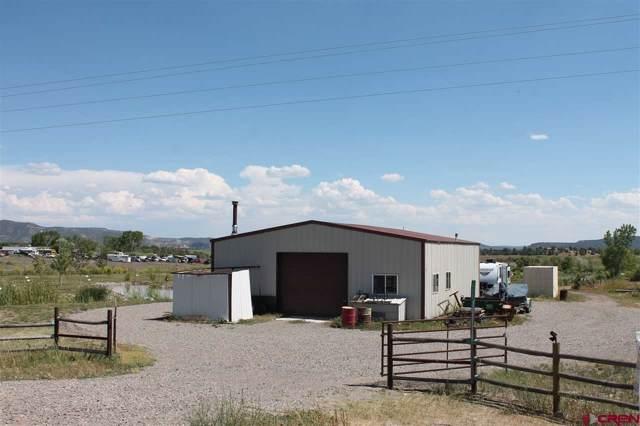 20220 State Highway 151, Arboles, CO 81121 (MLS #766013) :: The Dawn Howe Group   Keller Williams Colorado West Realty