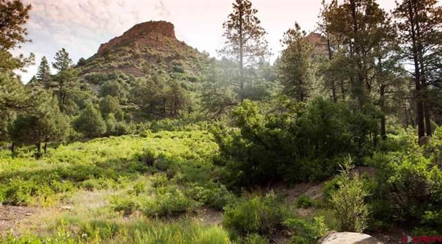 (Lot 59) TBD Wild Iris Avenue, Durango, CO 81301 (MLS #766019) :: Durango Mountain Realty