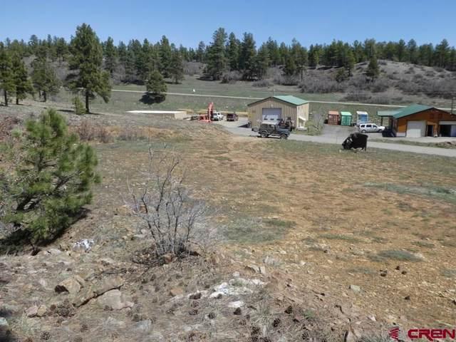 Goldmine Drive, Pagosa Springs, CO 81147 (MLS #766061) :: The Dawn Howe Group | Keller Williams Colorado West Realty
