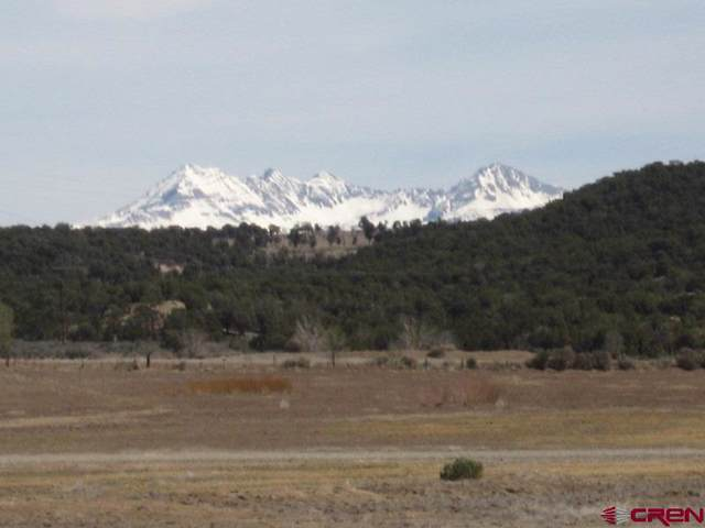TBD Road 30.1 - Lot #14, Mancos, CO 81328 (MLS #766169) :: The Dawn Howe Group | Keller Williams Colorado West Realty