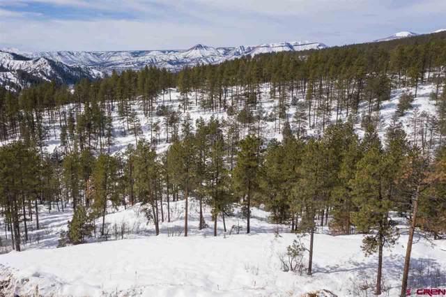 407 Edgemont Highlands Boulevard, Durango, CO 81301 (MLS #766184) :: Durango Mountain Realty