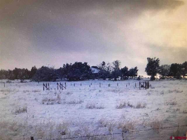 TBD Ward Creek Road, Cedaredge, CO 81413 (MLS #766187) :: The Dawn Howe Group | Keller Williams Colorado West Realty