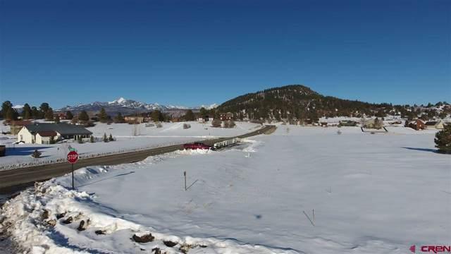 7301 N Pagosa Boulevard, Pagosa Springs, CO 81147 (MLS #766194) :: The Dawn Howe Group | Keller Williams Colorado West Realty