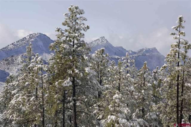 1128 Edgemont Highlands Drive, Durango, CO 81301 (MLS #766218) :: Durango Mountain Realty