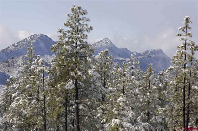 993 Edgemont Highlands Drive, Durango, CO 81301 (MLS #766228) :: Durango Mountain Realty