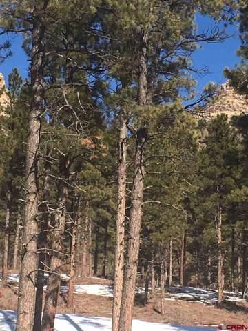 (Lot 82) 130 Bell Flower Court, Durango, CO 81301 (MLS #766255) :: Durango Mountain Realty