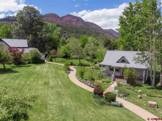7758 Cr 203, Durango, CO 81301 (MLS #766278) :: Durango Mountain Realty