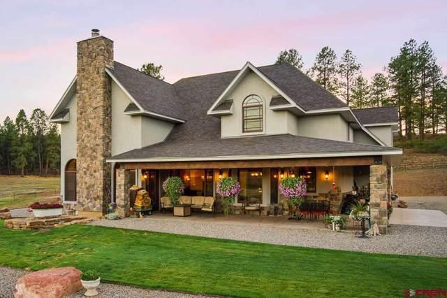567 Bald Eagle Road, Bayfield, CO 81122 (MLS #766292) :: The Dawn Howe Group | Keller Williams Colorado West Realty