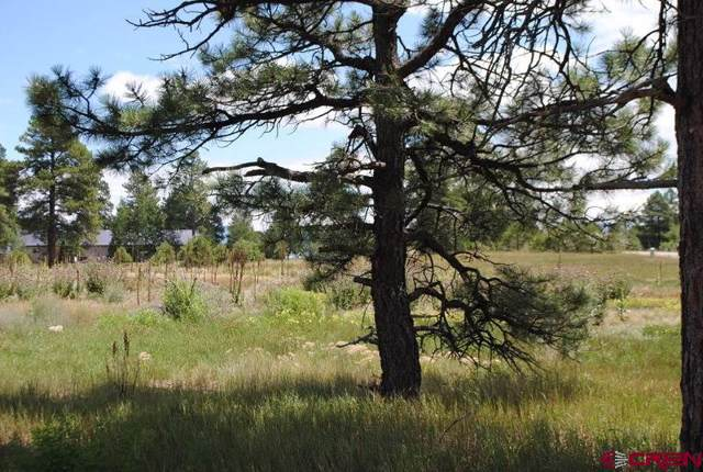 Lot 3 600 County Road, Pagosa Springs, CO 81147 (MLS #766344) :: The Dawn Howe Group | Keller Williams Colorado West Realty