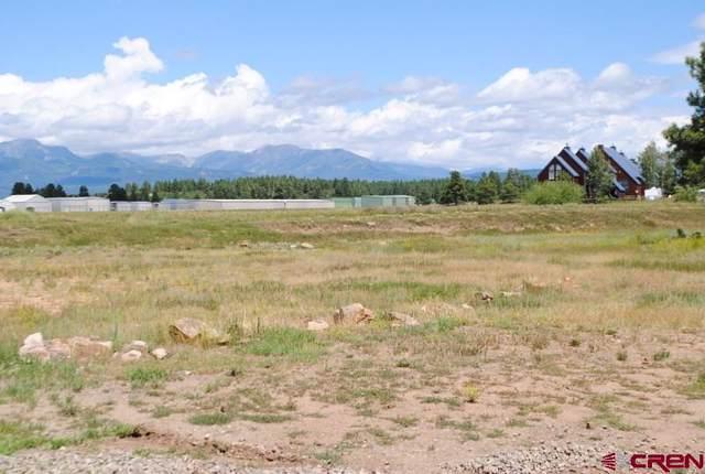 Backswing Court, Pagosa Springs, CO 81147 (MLS #766346) :: The Dawn Howe Group | Keller Williams Colorado West Realty