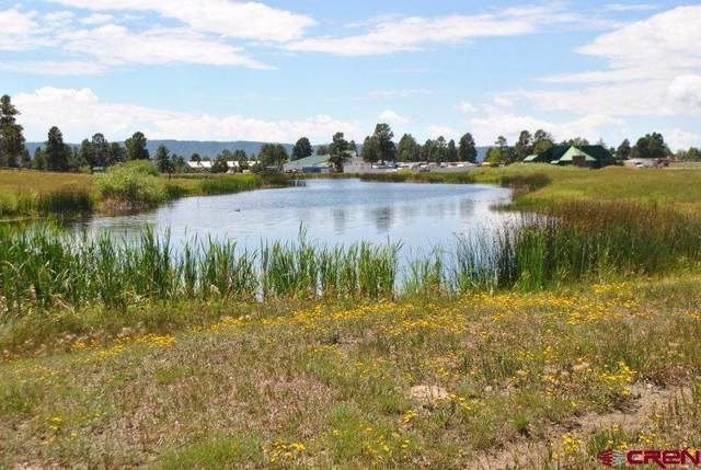 Lot 1 600 County Road, Pagosa Springs, CO 81147 (MLS #766349) :: The Dawn Howe Group | Keller Williams Colorado West Realty