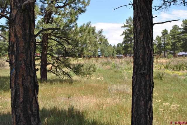600 County Road, Pagosa Springs, CO 81147 (MLS #766351) :: The Dawn Howe Group | Keller Williams Colorado West Realty