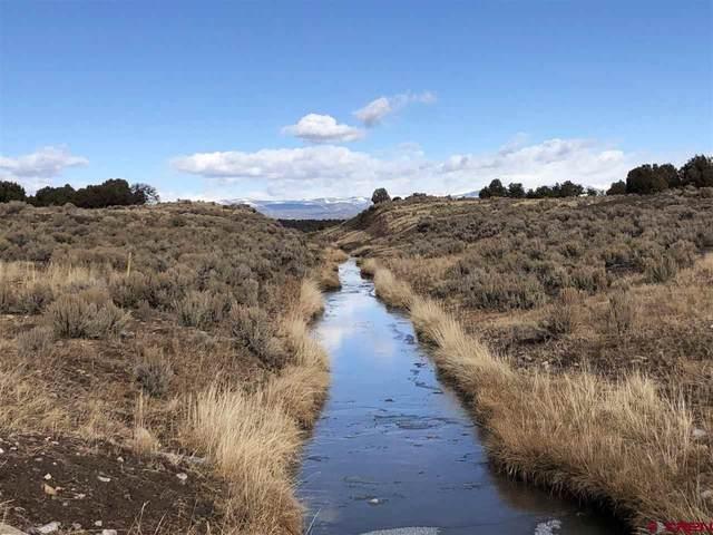 7906 County Road 318, Ignacio, CO 81137 (MLS #766379) :: The Dawn Howe Group | Keller Williams Colorado West Realty