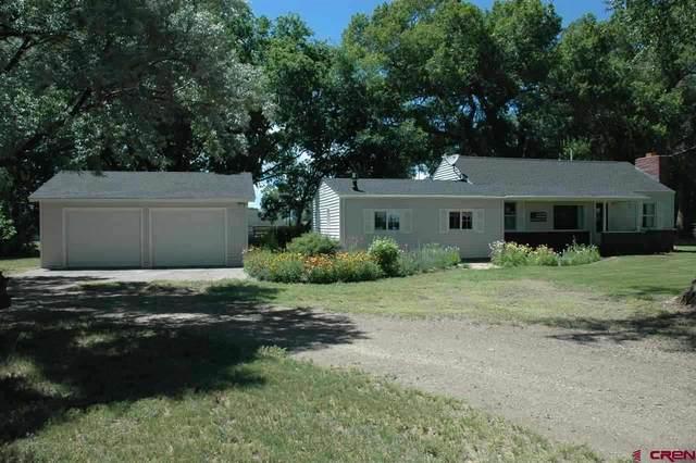 12047 S Us Highway 285, Alamosa, CO 81101 (MLS #766436) :: The Dawn Howe Group | Keller Williams Colorado West Realty