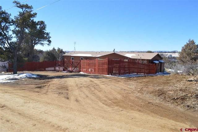 115 Pine Ridge Road, Durango, CO 81301 (MLS #766567) :: Durango Mountain Realty