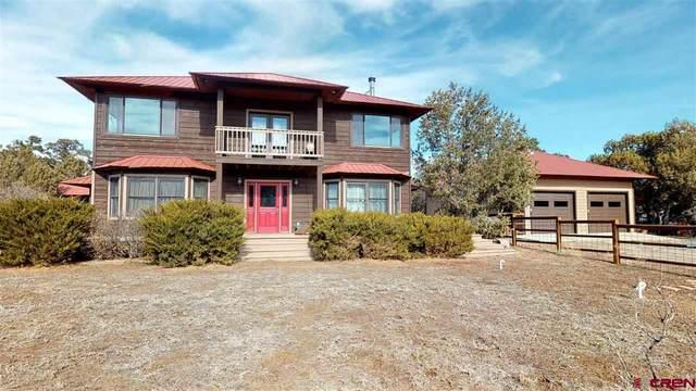 371 Calle Brazo, Ignacio, CO 81137 (MLS #766570) :: The Dawn Howe Group | Keller Williams Colorado West Realty