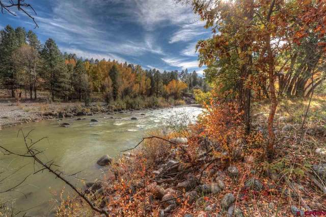 13950 County Road 250, Durango, CO 81301 (MLS #766575) :: Durango Mountain Realty